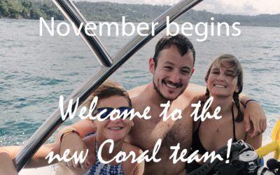 Coral Diaries – November begins