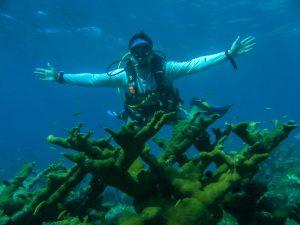 JD marine biologist costa rica
