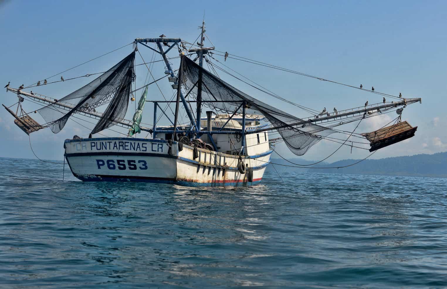 No a la Pesca de Arrastre en Costa Rica