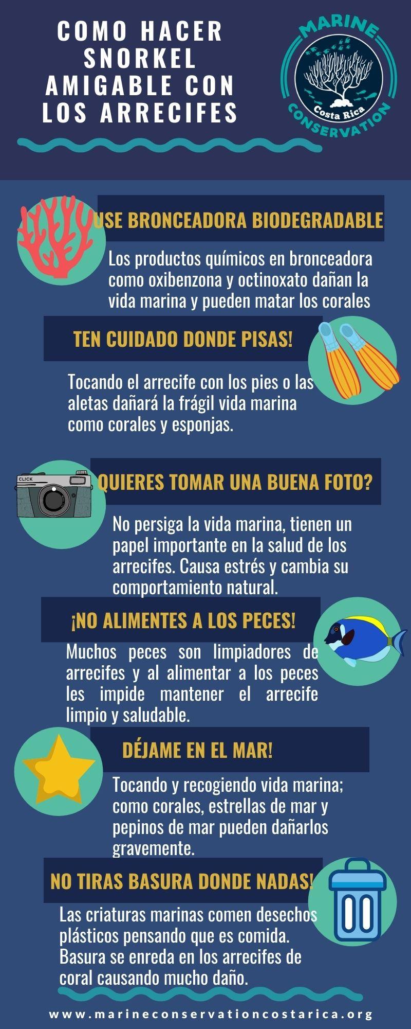 Infografia de Como Hacer Snorkel Amigable con los Arrecifes de Coral