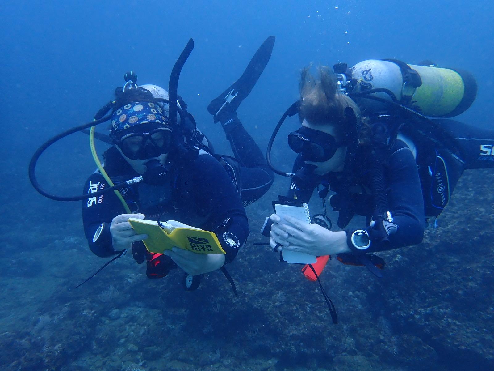 ECO Divemaster training